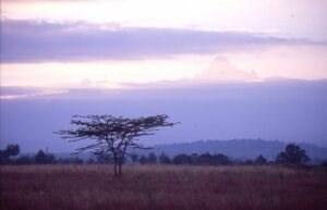"""AFRIKA - """"29 Wochen Reisefieber"""""""