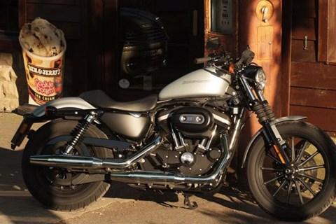Harley Sportster Iron