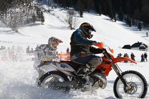 Skijöring in Gosau