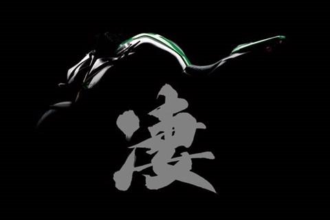 Neue Kawasaki 2014