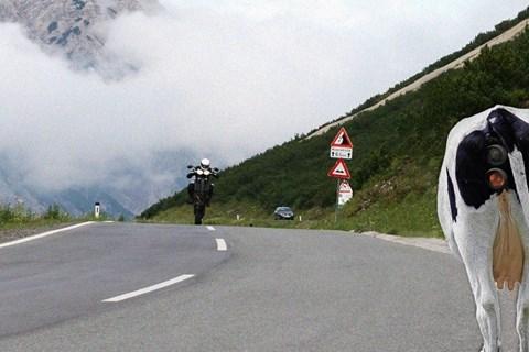 Alpen Radarfallen