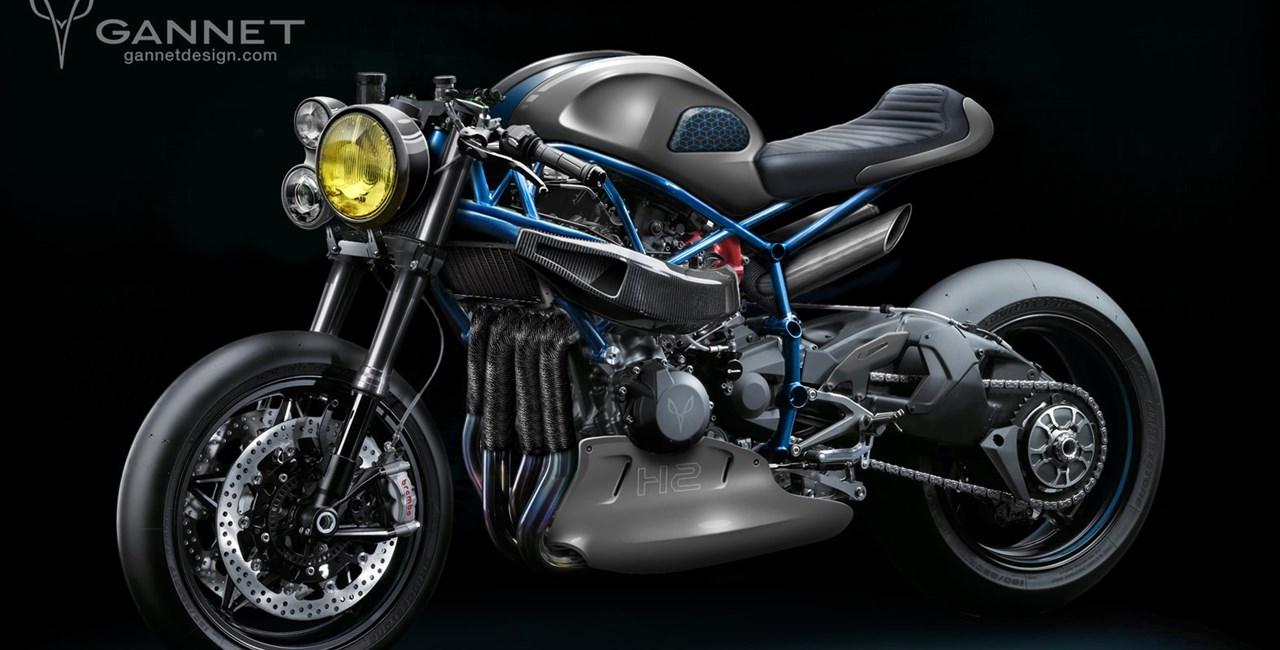 Kawasaki Ninja H2 Nakedbike