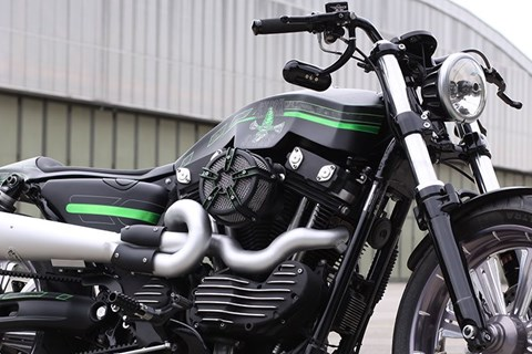 Stock Sucks - Custom Harley Sportster