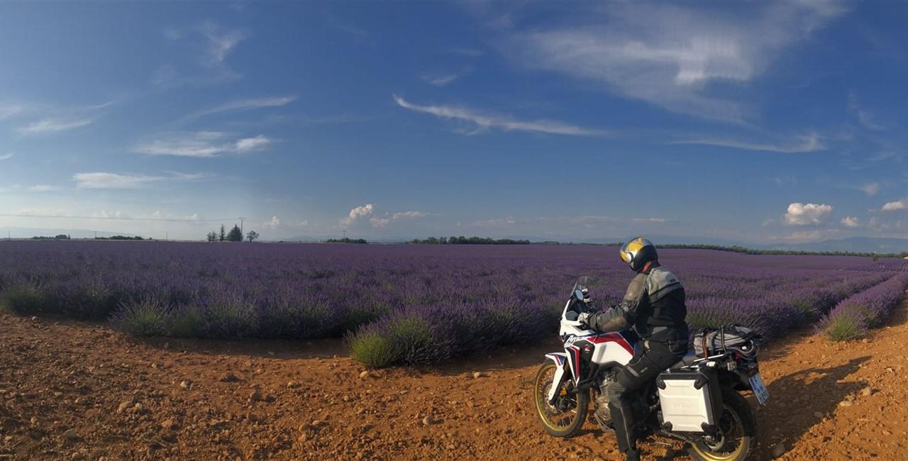 Die Lila Laune: Mit dem Motorrad in den Süden Frankreichs