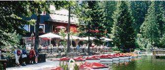 Hotel Cafe Restaurant Mummelsee im Schwarzwald
