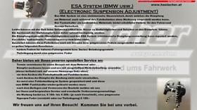 ESA System