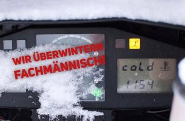 /contribution-ueberwinterung-11344