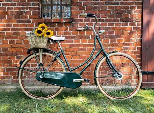 EXCELSIOR - Classicräder / Singlespeed & Fixie Bike
