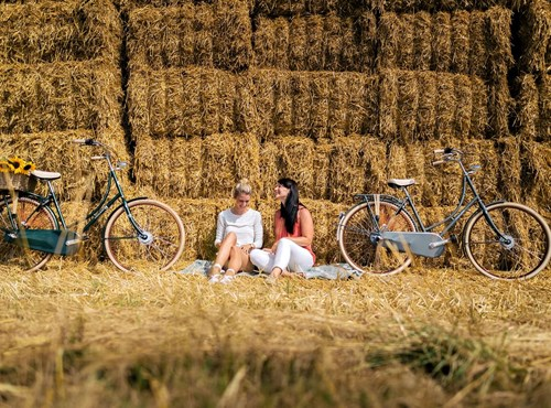 EXCELSIOR - Classicräder / Singlespeed & Fixie Bikes
