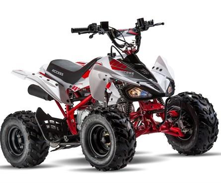 Neumotorrad Access MiniSport 110