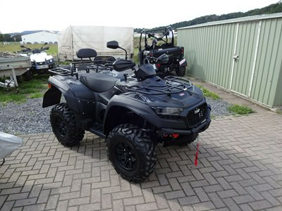 Blade 550 EFI 4x4 IRS Black Edition
