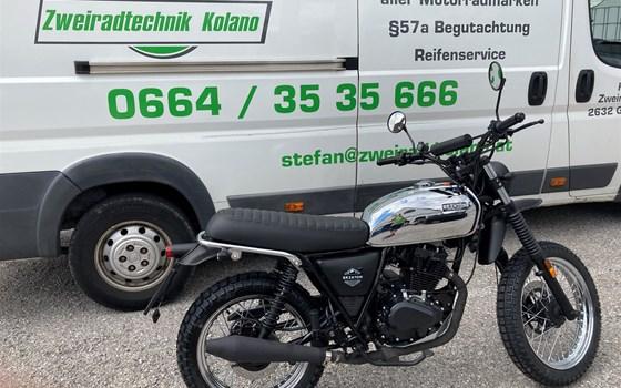 Neumotorrad: Brixton Felsberg 125 , Baujahr: 2020, Preis