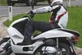 Honda PCX und Vision