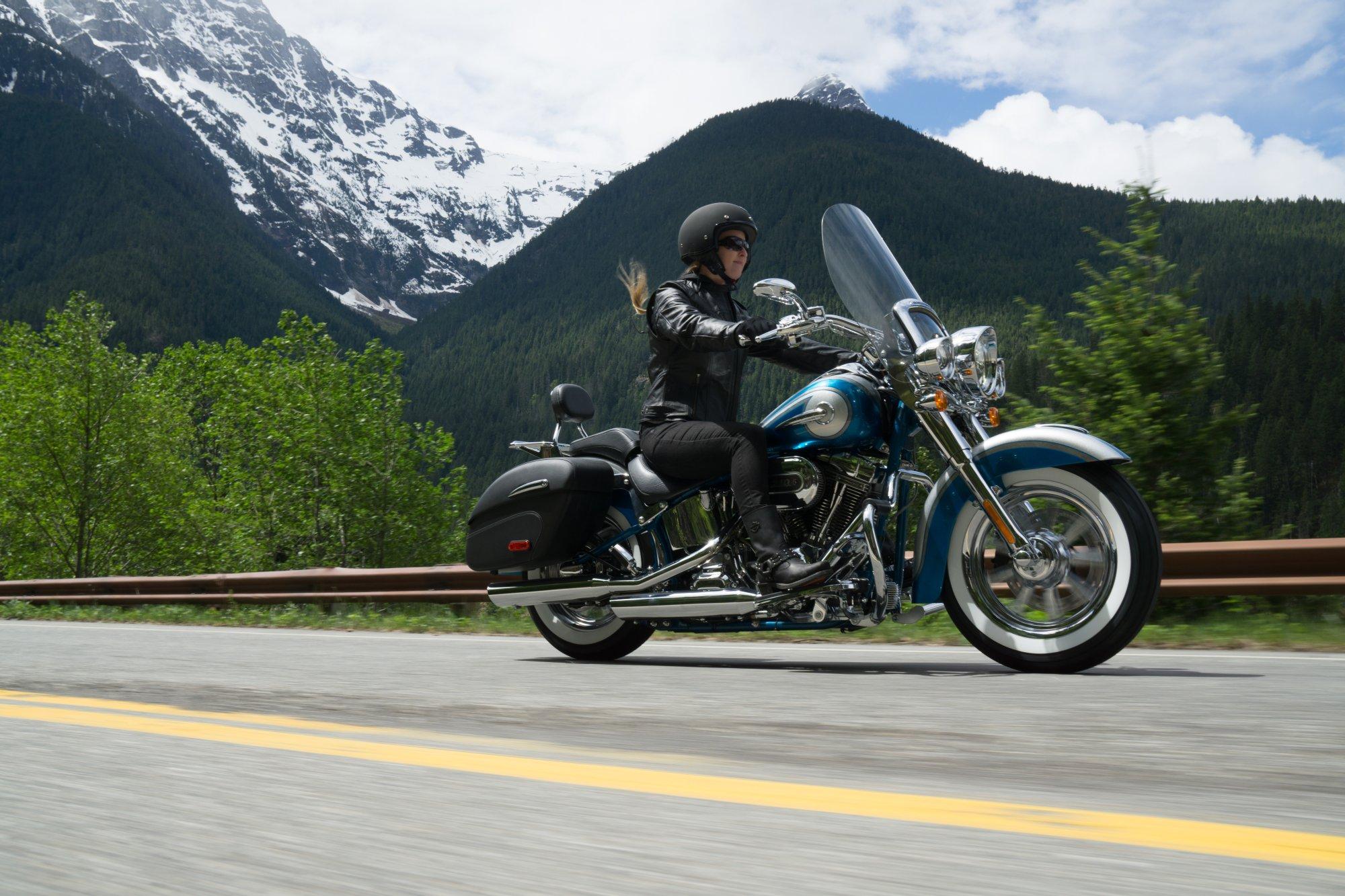 Harley Davidson Fxstsse Screamin
