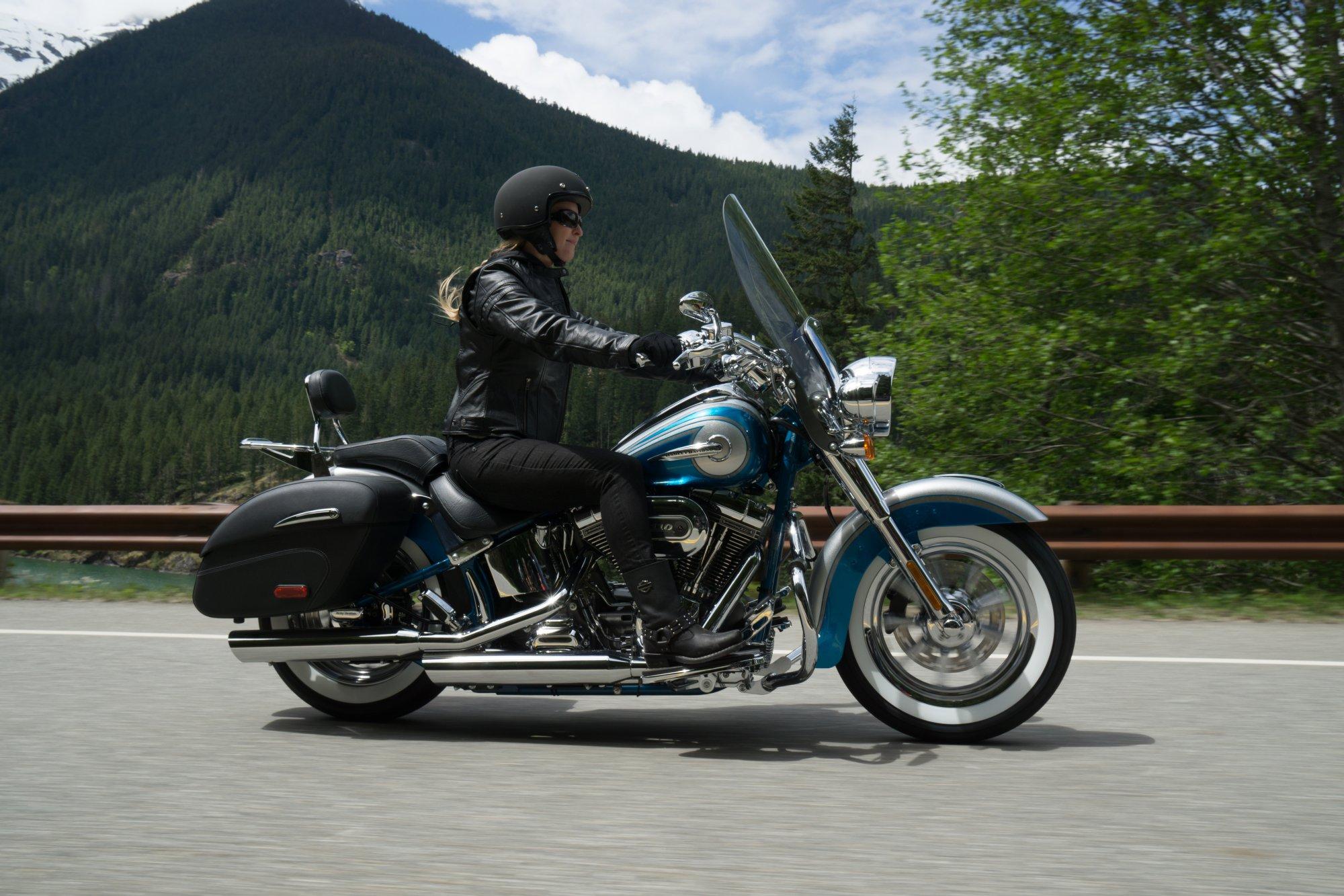 Harley Davidson  Fat Bob Accessories
