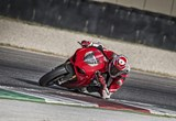 Ducati Panigale V4 S 2019 Bilder