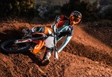 "KTM 450 SX-F ""HERLINGS EDITION"" 2019 Bilder"