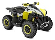 Can-Am Renegade 650 XXC 2019
