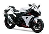 Suzuki GSX-R 1000 2020 Bilder