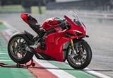Ducati Panigale V4 S Bilder