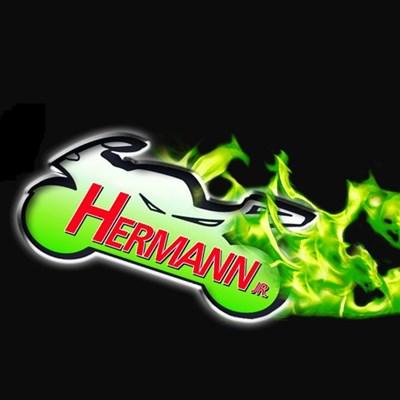 Steffen Hermann