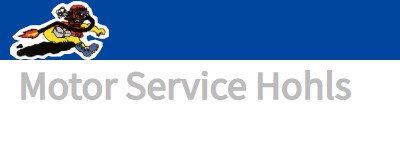 Motor-Service-Hohls Logo