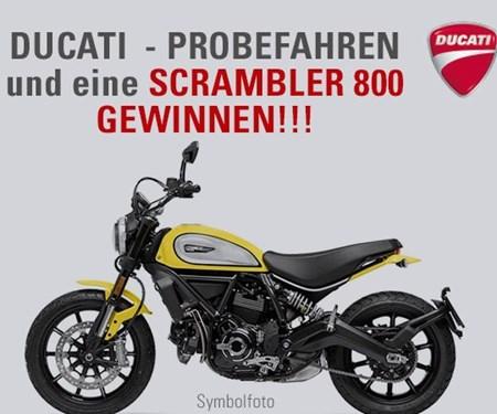 SCRAMBLER 800 GEWINNEN