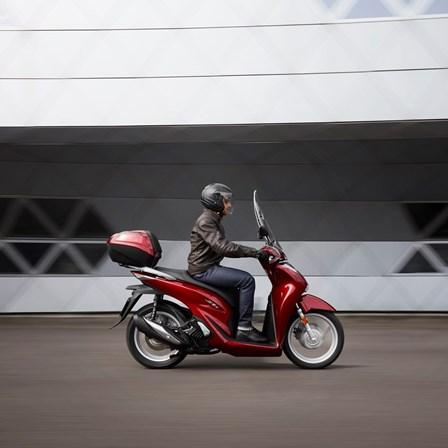 Honda Semmler - Honda SH125i 2020