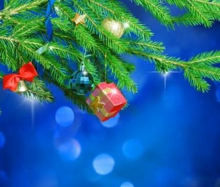 Frohe Feiertage 2019!  Frohe Weihnachten und einen guten Rutsch ins neue Jahr wünschen das gesamte Team BAUMSCHLAGER ZWE... Weiter >>