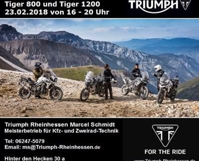 Neumodell-Vorstellung Tiger 800 und Tiger 1200