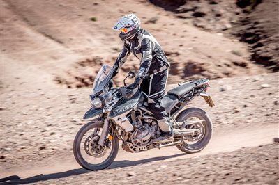 Pat-Bikes-News: NEUE TIGER 800