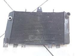 Kühler Kawasaki ZRX 1100