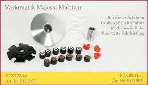 Bild von Variomatik Malossi Multivar