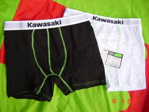 Bild von Boxer Chorts Kawasaki