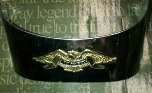 Bild von FXWG FXST 80 - Gold Eagle Taillight Visor