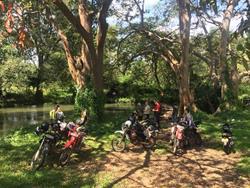 Sri Lanka Motorradabenteuer mit Dylan Wickrama inkl. Flug