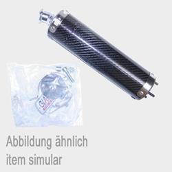 GIAN Enddämpfer Carbon RS50/Tuono50