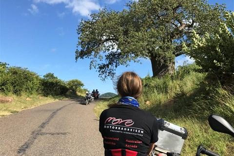 """17 Tage """"Southern Africa Tour"""", Südafrika, Botswana, Zambia (Vic Falls!), Malawi, Mozambique, Zimbabwe"""