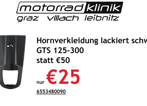 Hornverkleidung lackiert GTS 125-300 schwarz statt €50 nur €25