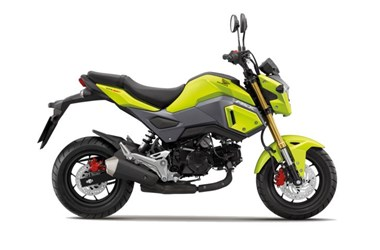 /rental-motorcycle-honda-msx-125-12984