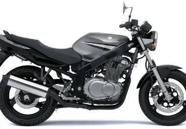 Leihmotorrad Suzuki GS 500