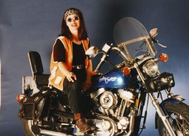 Gebrauchtmotorrad Harley-Davidson Sportster XL 883 Classic