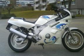 Yamaha FZR 600  Genesis Umbau anzeigen