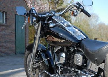 Gebrauchtmotorrad Harley-Davidson Softail Springer FXSTS