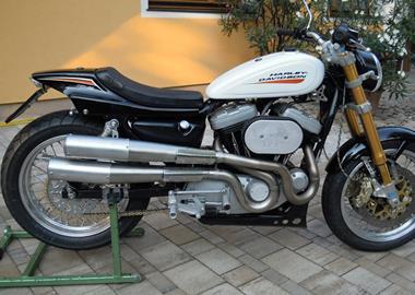 Gebrauchtmotorrad Harley-Davidson Sportster XL 883