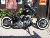 Harley-Davidson Custom Bike