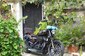 Harley-Davidson Sportster XL 883 N Iron Umbau anzeigen