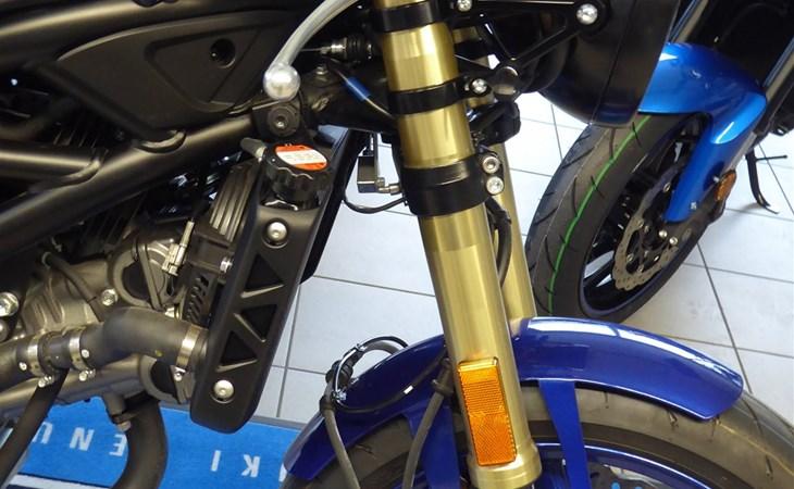 Details zum Custom-Bike Suzuki SV 650 des Händlers Biker