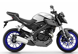 yamaha mt 03 test technische daten preis gebraucht. Black Bedroom Furniture Sets. Home Design Ideas