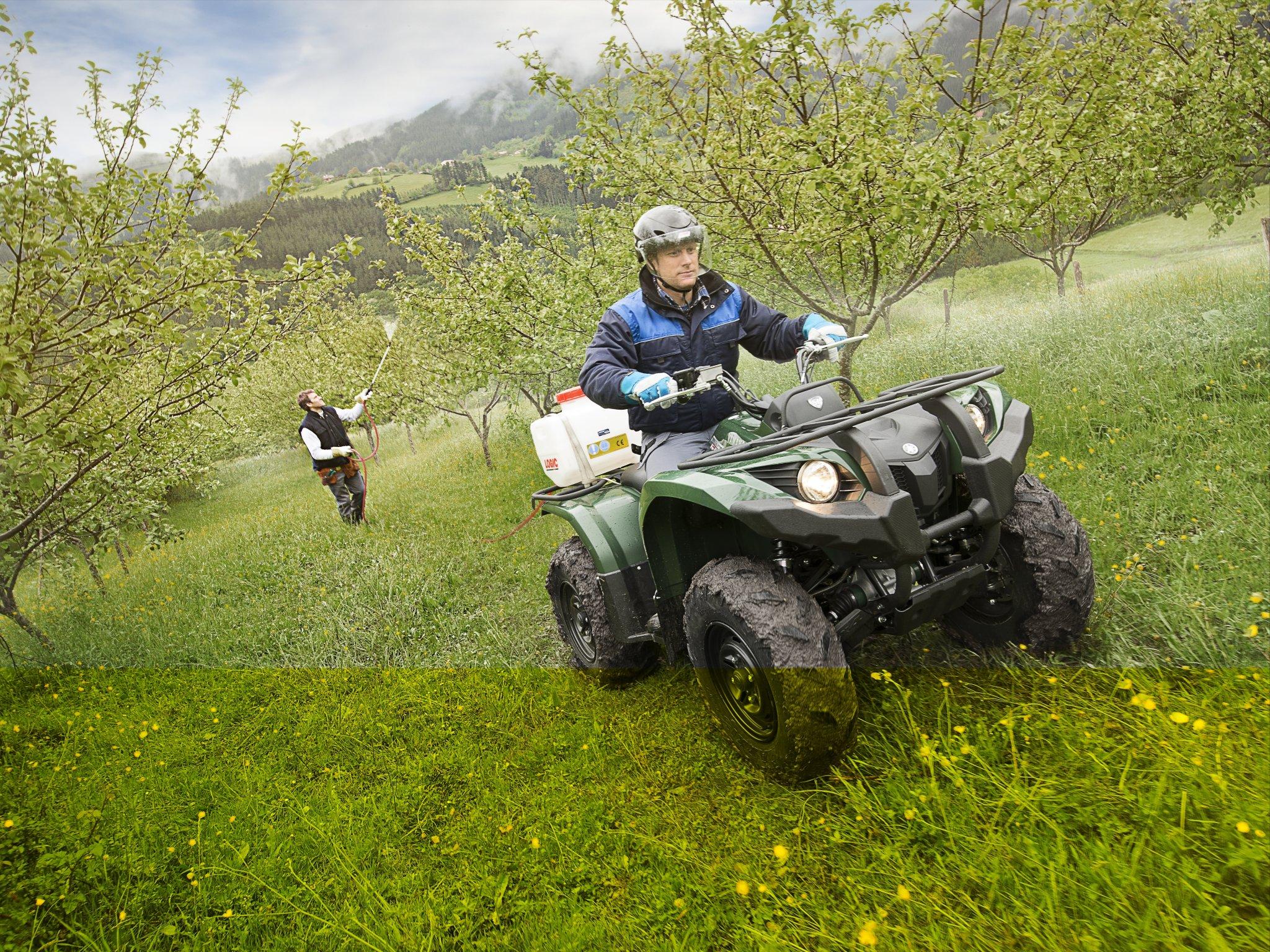 Yamaha grizzly 450 baujahr 2014 bilder und technische daten for 2014 yamaha grizzly 450 value